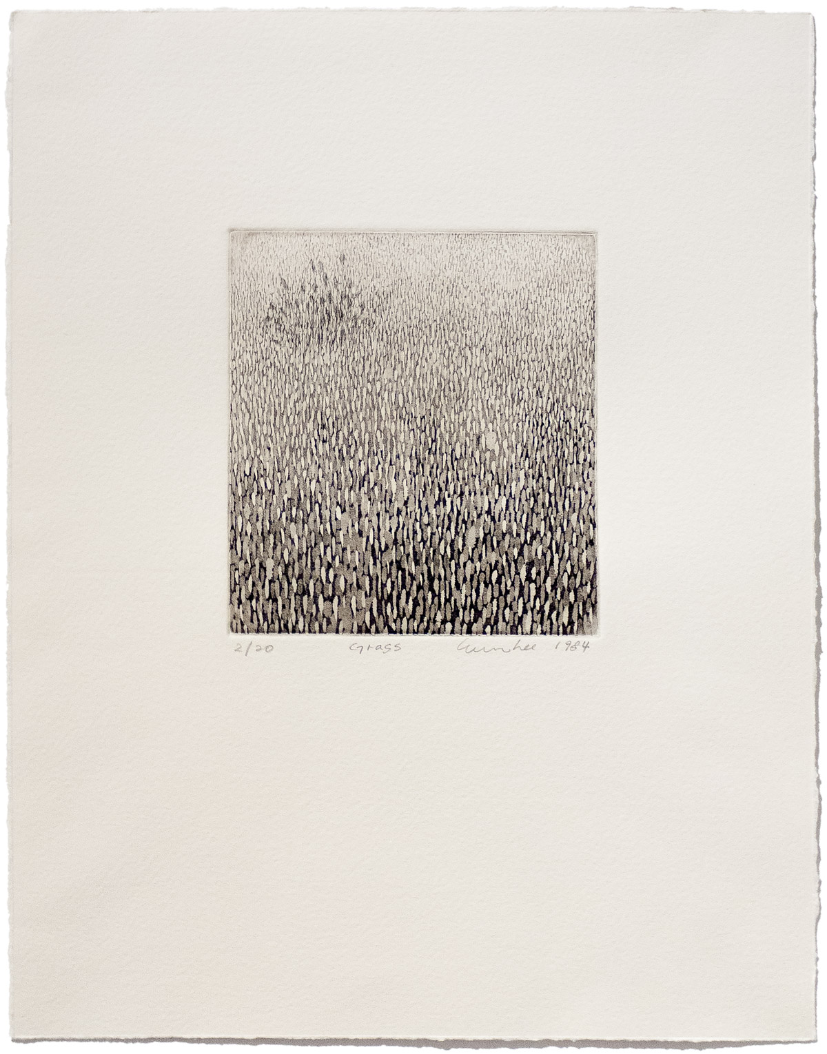 Soo Im Lee, Grass, 1984, limited-edition etching on paper