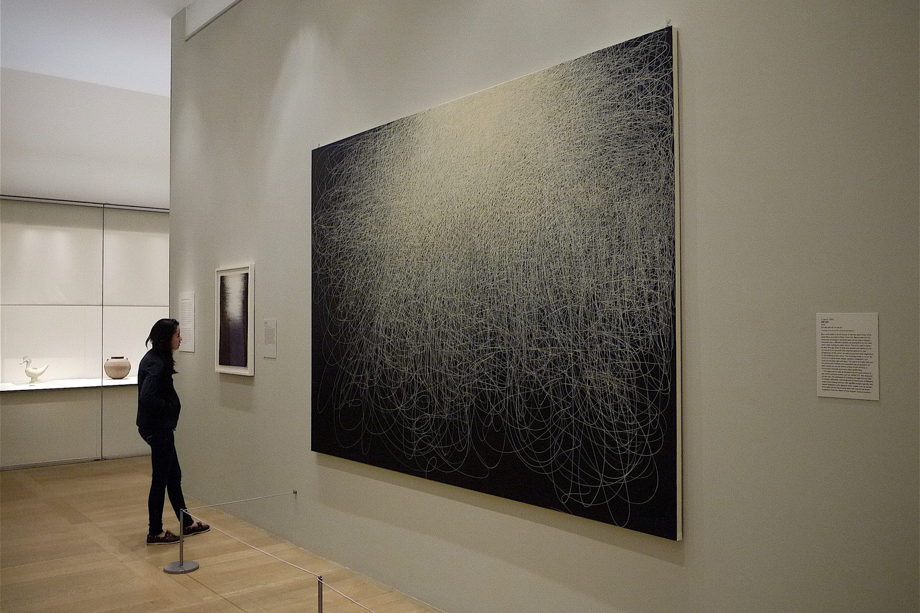Installation view of Il Lee's Untitled 303 and IW-105 at the Metropolitan Museum of Art, New York, 2010-11.