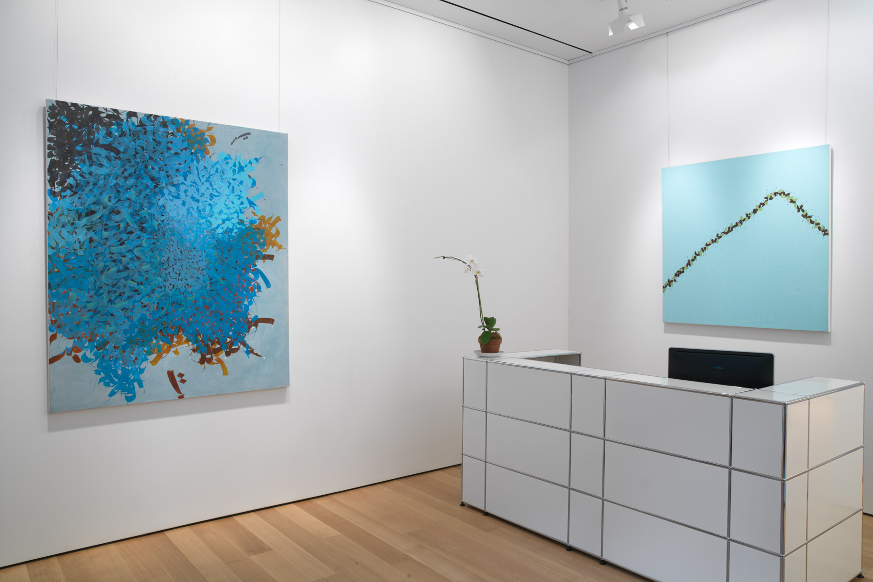 installation view of Pouran Jinchi's work
