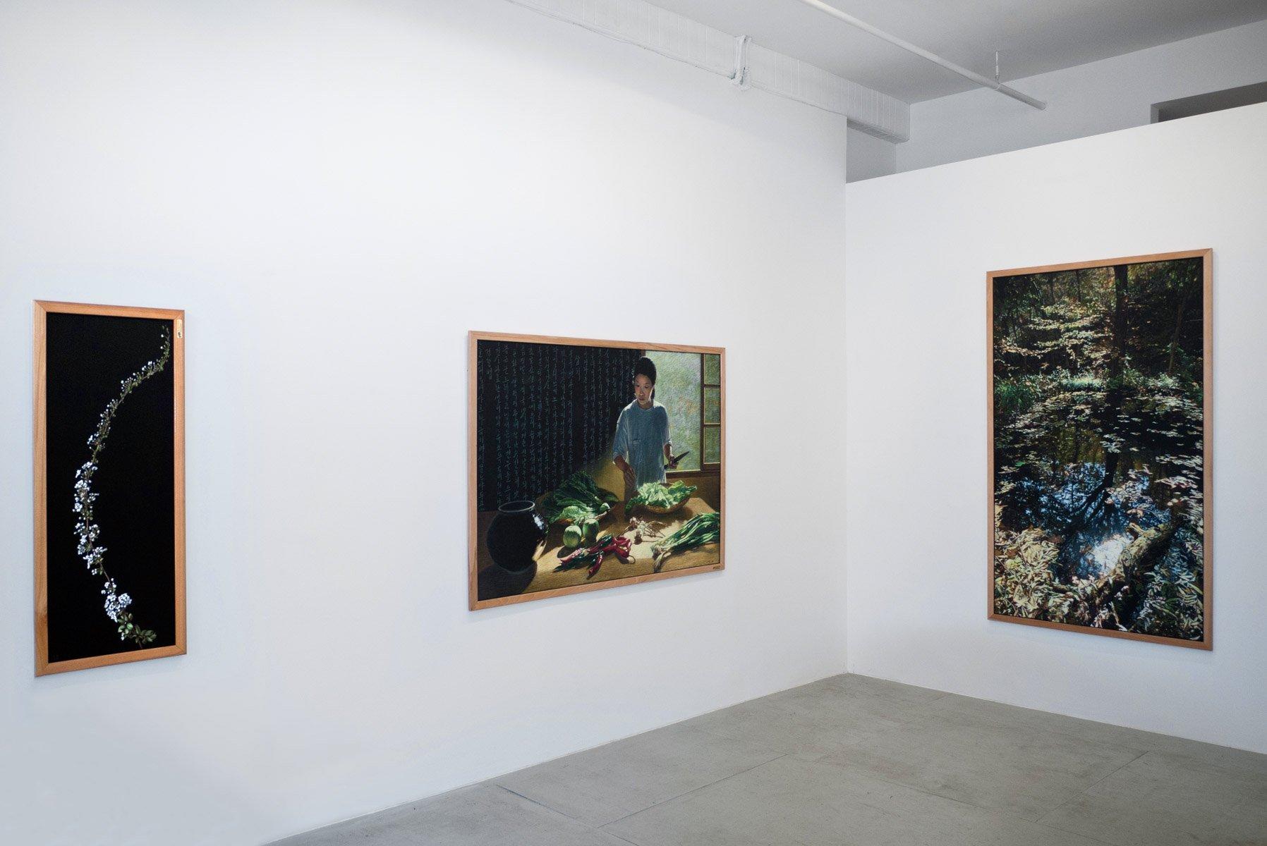Myong Hi Kim, installation